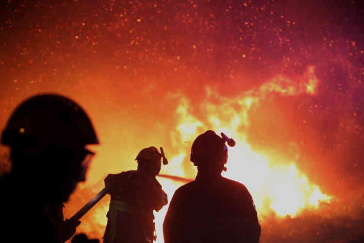 Des pompiers luttent contre un feu à Biguglia en Corse, le 25 juillet.