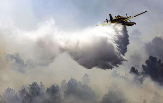 Six groupes d'intervention des pompiers de l'Hérault, soit environ 150 hommes, 30véhicules et trois Canadair sont mobilisés pour éteindre cet incendie.