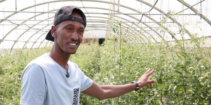 Hassan a obtenu son statut de réfugié en octobre 2016. Depuis début juillet 2017, iltravaille aux Jardins de cocagne, une petite exploitation d'agriculture biologique à Arronnes, dans l'Allier.
