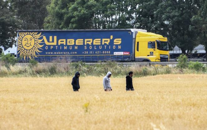 Des migrants traversent un champ de céréales, près du port de Calais, le 28 juin.