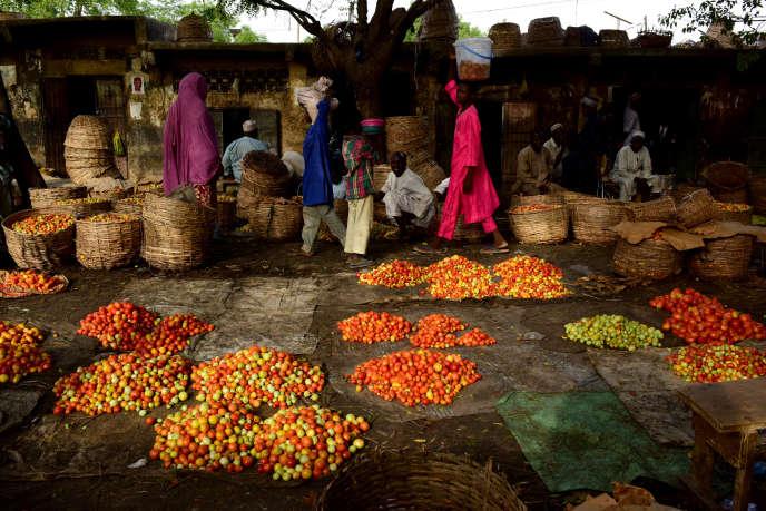 Au marché de légumes de Kano, dans le nord du Nigeria, en mai 2017.