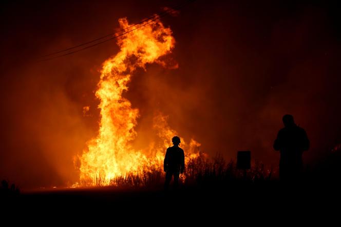 Des pompiers tentent d'éteindre un feu de forêt à côté du village de Macao, près de Castelo Branco, au Portugal, le 26 juillet.
