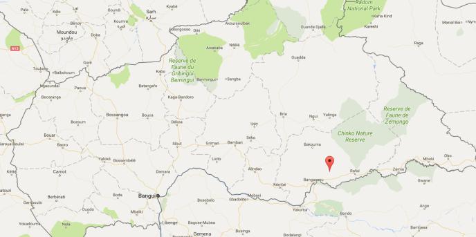 Six membres de la Croix-Rouge centrafricaine ont été tués à Gambo, dans le sud-est du pays.