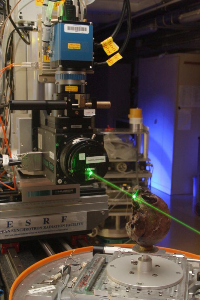 Le crâne de Nyanzapithecus alesi a été osculté grâce aux rayons X du syncrotron européen de Grenoble.