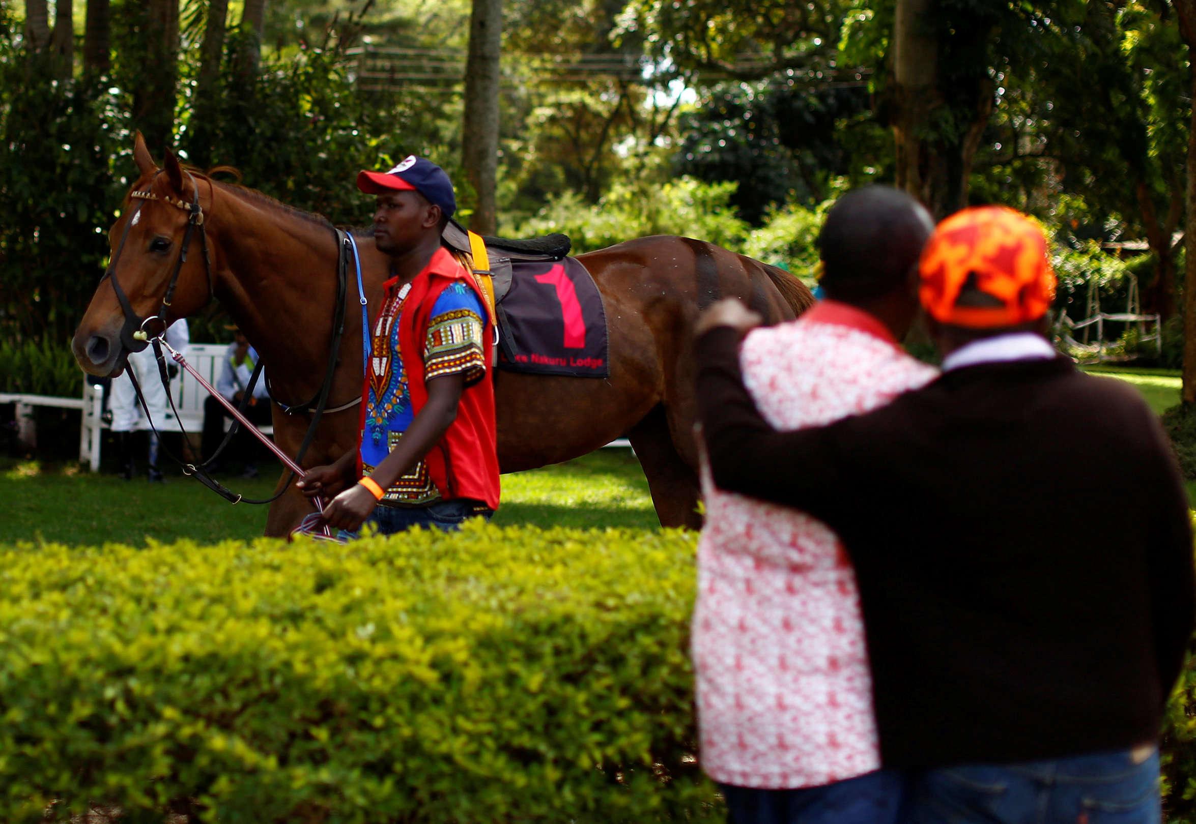Un homme guide un cheval avant une course à l'hippodrome de Ngong, le 27novembre 2016.