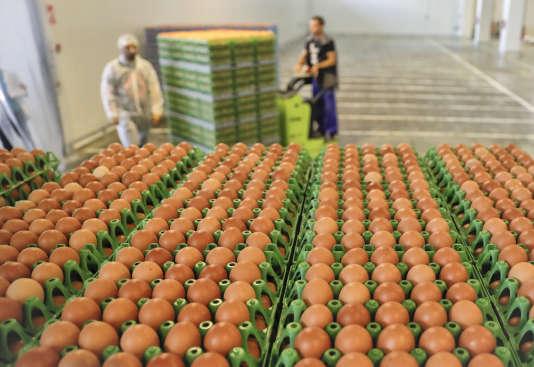 Des oeufs contaminés au fipronil ont également été retrouvés en Roumanie.