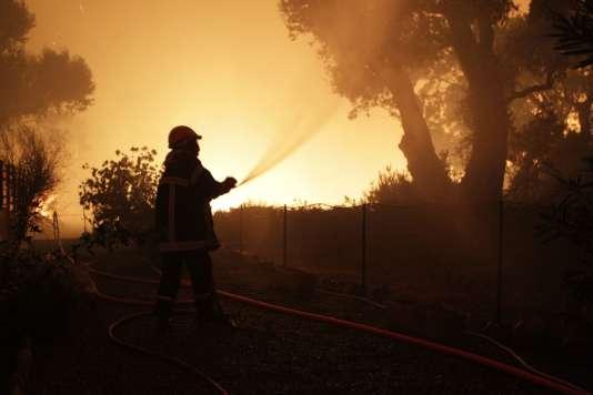 Un pompier lutte contre les flammes à Pietracorbara, en Haute-Corse, le 11 août.
