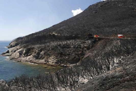 En Corse, les feux ont ravagé plus de 4000hectares depuis la fin du mois de juillet.