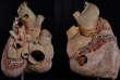 Cet organe méconnu est le plus gros cœur du règne animal. Pour la première fois, un musée en a fait naturaliser un.