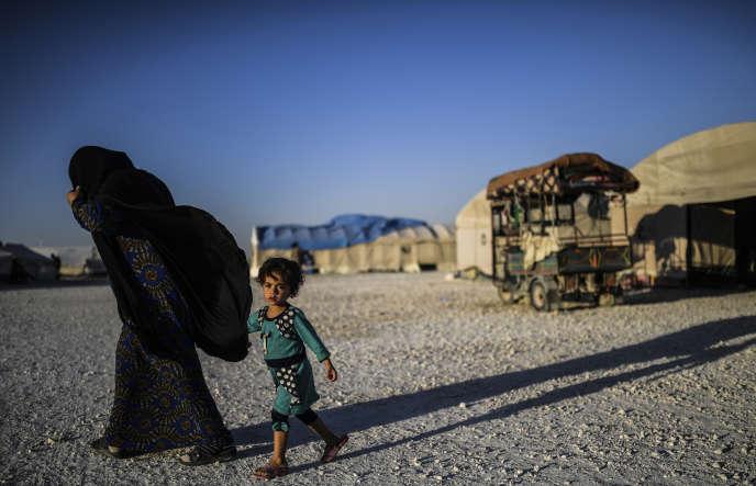 Un femme syrienne et son enfant, dans le camp d'Ain Issa, en juillet 2017.