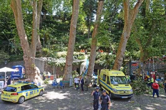 Treize personnes ont été tuées par la chute d'un arbre, lors d'une fête religieuse, mardi 15 août, sur l'île portugaise de Madère.