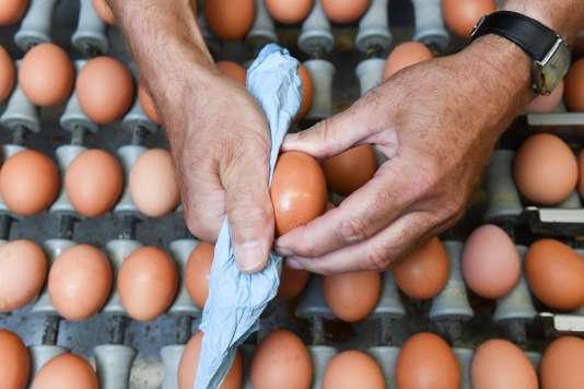 La liste des produits contenant des œufs contaminés au fipronil sera diffusée dans les prochains jours sur le site du ministère de l'agriculture.