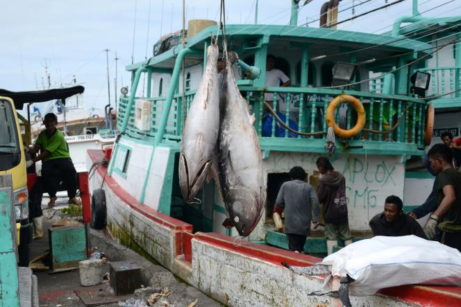 Le mercure se stocke et s'accumule dans la chaîne alimentaire où il est omniprésent – dans certains produits de la mer en particulier (thon, espadon, etc.).