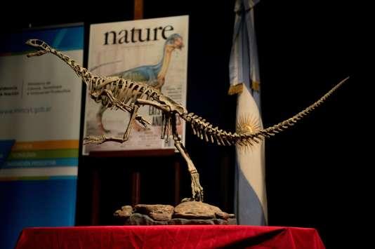 La réplique d'un squelette de chilesaurus au musée de sciences naturelles Bernardino-Rivadavia de Buenos Aires, en Argentine, en juin2015.