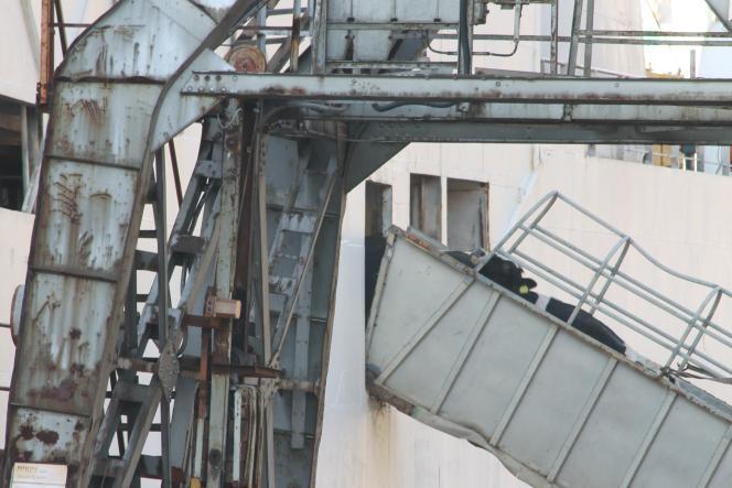 Les rampes d'accès aux bateaux sont parfois trop inclinées (30 °).