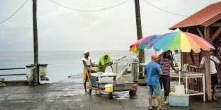 Retour de pêche à Bellefontaine, petite commune dans le nord-ouest de l'île. Au menu du jour: thons, rascasses rouges et lambis.