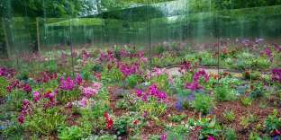 Le jardin «De l'autre côté du miroir», des trois Tourangeaux, Nicolas et Alice Stadler et Thierry Giraut, a remportéle prix de la Création 2017.