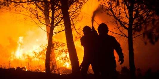 Le sud de la France a connu des incendies à répétition cet été, notamment pendant la vague de canicule du mois d'août.
