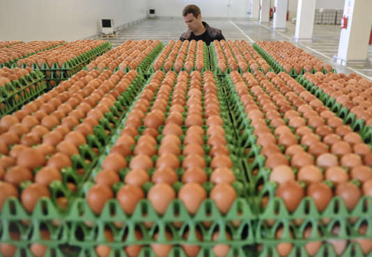 Le gouvernement néerlandais a révélé, le 23 août, qu'une autre substance «modérément toxique » avait été utilisé par Chickfriend, le prestataire de services incriminé dans l'affaire du fipronil.