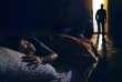 Tableau photographique composé par le couple Marjolaine Caronet Louis Bachelot, extrait d'une série intitulée «Inside Job» (2012). Du 7septembre au 28octobre, une exposition de Bachelot&Caron, intitulée «Batailles&Mille feuilles», aura lieu à la School Gallery/Olivier Castaing, à Paris.