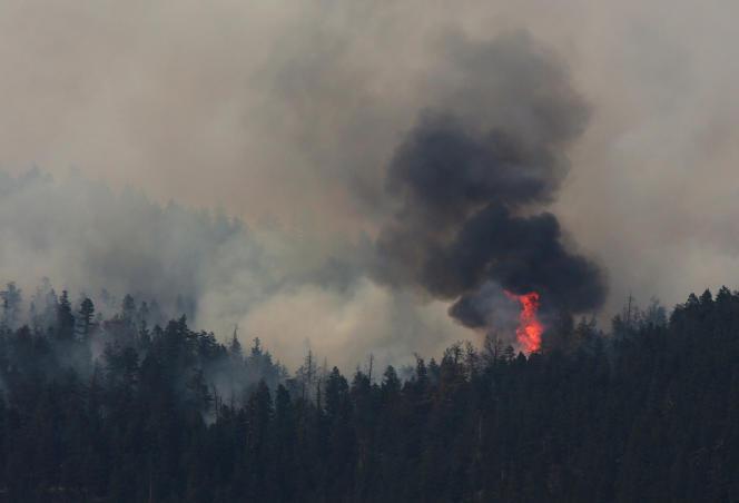 Incendie au nord de Cache Creek, en Colombie-Britannique (Canada), le 18 juillet.