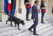 Emmanuel Macron, avec son chien Nemo, sur le perron du Palais de l'Elysée, à Paris, lundi 28 août.