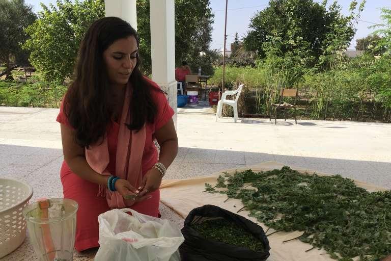 Sarah Toumi à Bir Salah, avec le moringa produit par sa tante et qu'elle s'apprête à broyer pour obtenir de la poudre.