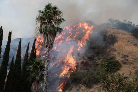L'incendie La Tuna Fire (du nom du canyon où s'est déclaré le feu vendredi 1er septembre), a ravagé plus de 2000 hectares à Los Angeles (Californie).