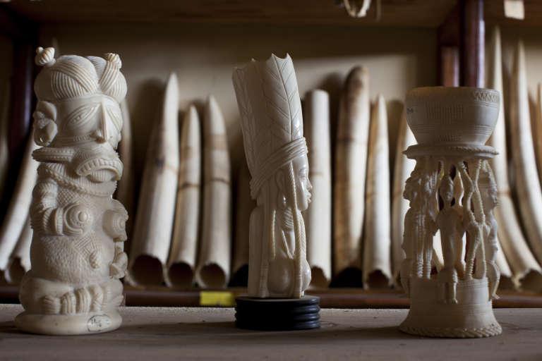 Statuettes d'ivoire confisquées au Cameroun en 2012.