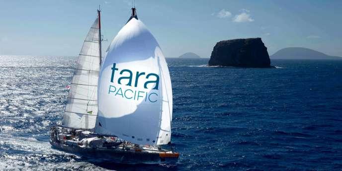 La goélette Tara arpente les eaux du Pacifique jusqu'à fin 2018.