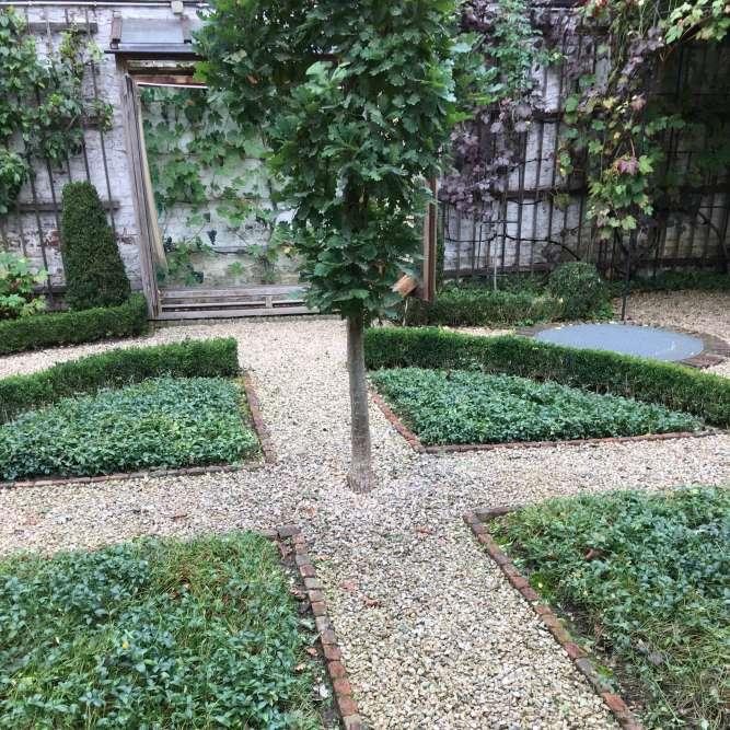 Dans les jardins de bruxelles for Ecran de jardin belgique