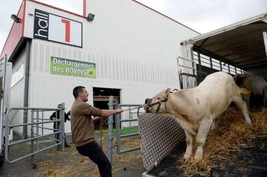 Au Space, le Salon de l'élevage de Rennes, le 11 septembre.