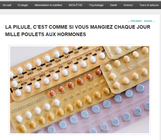 """Capture d'écran du site """"Sain et Naturel""""."""