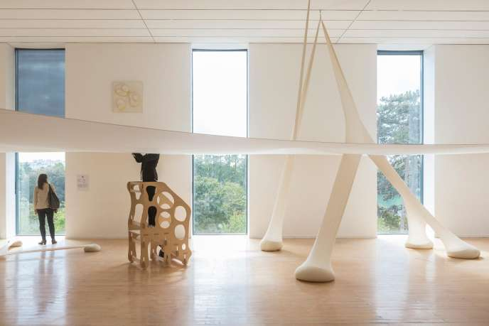 Installation de l'artiste brésilien Ernesto Neto, au MAC Lyon.