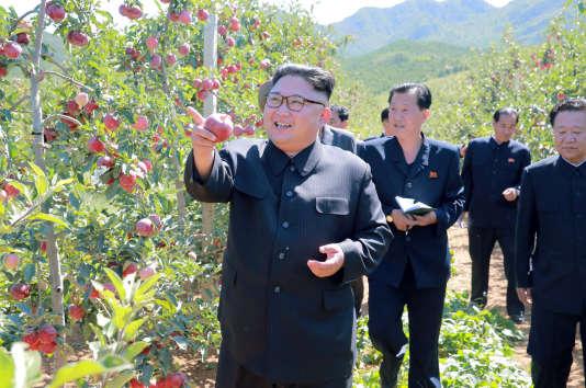 «L'ambivalence chinoise s'explique en partie par les besoins économiques de ses deux grandes provinces, le Liaoning et le Jilin, le long des 1 400 kilomètres de frontière entre les deux pays». (Photo : Kim Jong-un visite une pommeraie, dans la région de Kwail county dans la province nord-coréenne du South Hwanghae. Photo fournie par l'agence gouvernementale Central News Agency (KCNA), le 21 septembre).