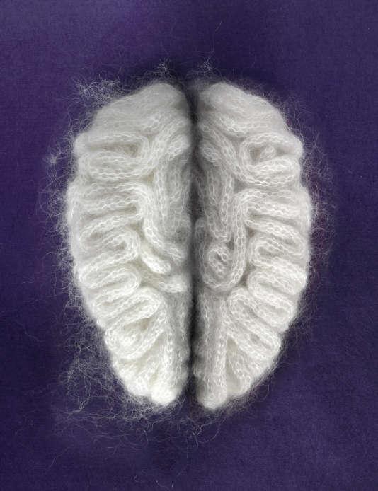 «Soft Brain», 2010, de l'Allemande Sarah Illenberger.
