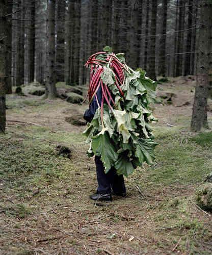 Dans des sociétés où les personnes âgées sont écartées de la marche du monde, où la maison de retraite est une de leur rares perspectives d'avenir, l'art de Riitta Ikonen et Karoline Hjorth démontre l'absurdité de la pensée productiviste qui les ordonne.
