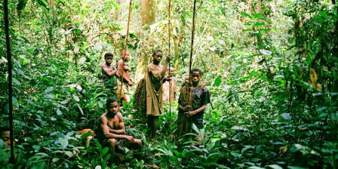 Des Pygmées Baka dans le bassin du Congo.