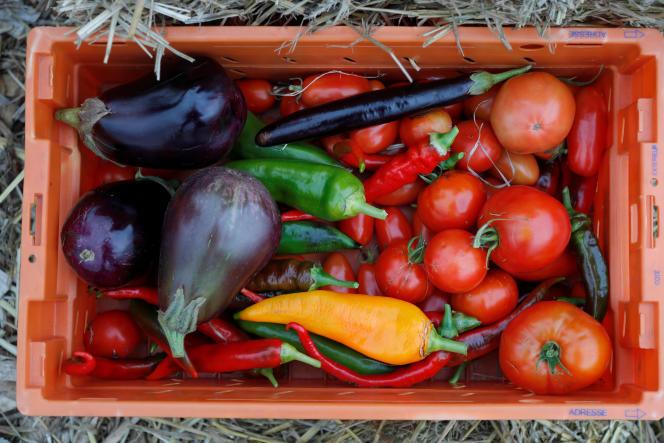 Récolte issue d'un jardin installé sur le toit d'un centre de tri postal à Paris par l'association Facteur graine.