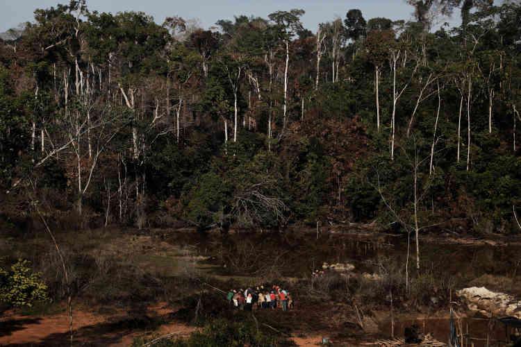 La suspension, mercredi, du décret d'un gouvernement accusé de brader «le poumon de la Terre» a été motivée par des raisons constitutionnelles et par la défense de l'environnement.