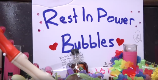 Des fleurs en hommage à Bubbles tué le 9 septembre.