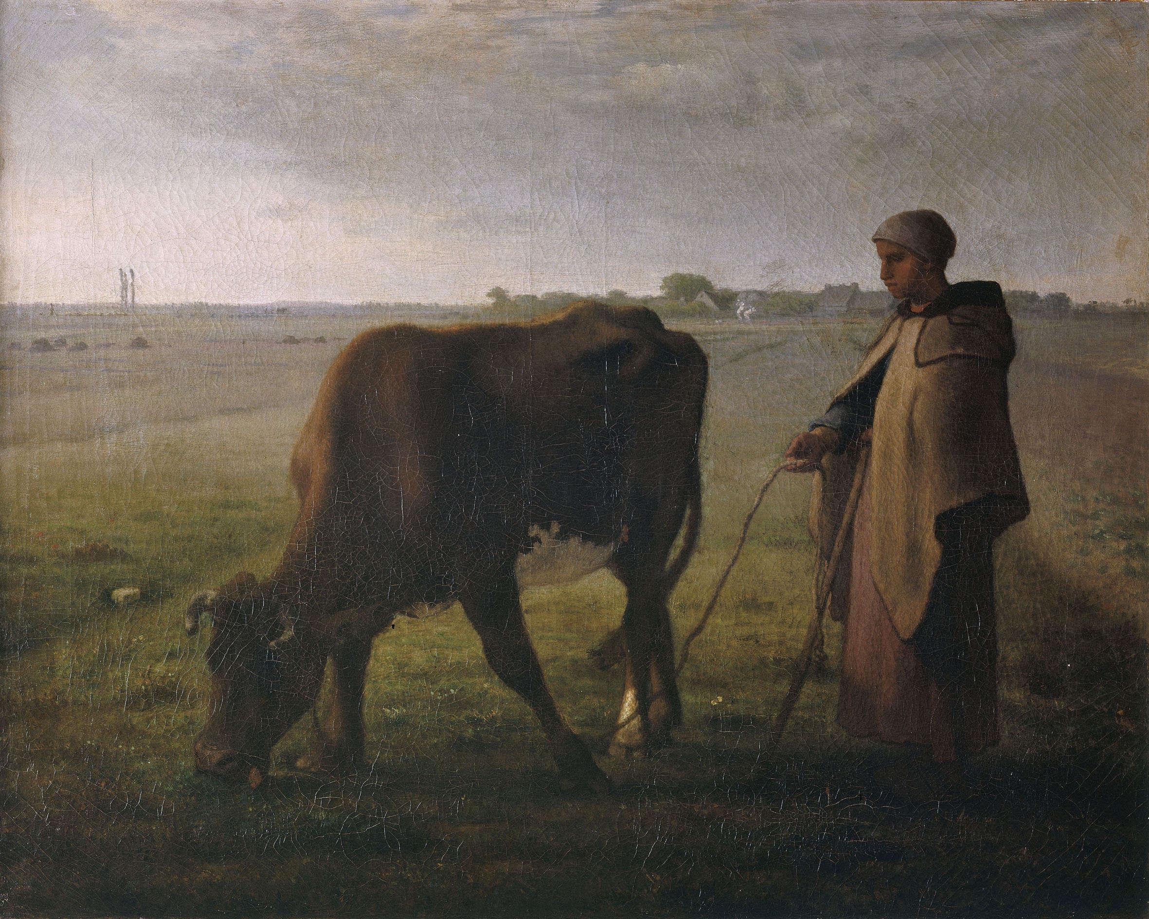 """«""""Que vous fait ressentir à vous, la vue de cette jeune femme à l'air idiot, aux vêtements en guenilles, qui tient par une méchante corde une vache malingre dont l'échine perce la peau?"""" La critique se déchaîna en 1859, ne voulant ou ne pouvant comprendre que Millet avait voulu peindre cette scène dans toute sa vérité– celle d'une pauvre enfant faisant paître sa vache, son seul bien, avec le sérieux qui s'imposait à elle.»"""