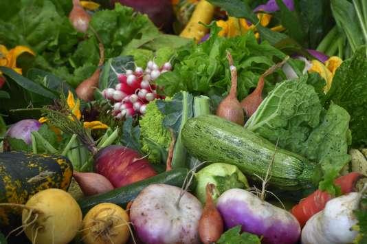 «Les producteurs ont fait des efforts pour diversifier leurs productions, pour développer les légumes oubliés», insiste Yuna Chiffoleau.