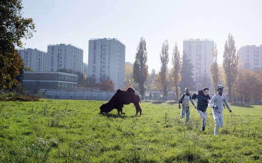 «Swagger» se déroule dans une cité à Aulnay-sous-Bois.
