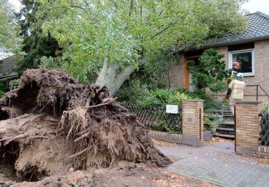 La capitale allemande comptait également plusieurs blessés, selon un bilan en soirée tandis que les vents commencaient à faiblir. La plupart ont été percutés par des arbres ou des branches tombés sur la chaussée.