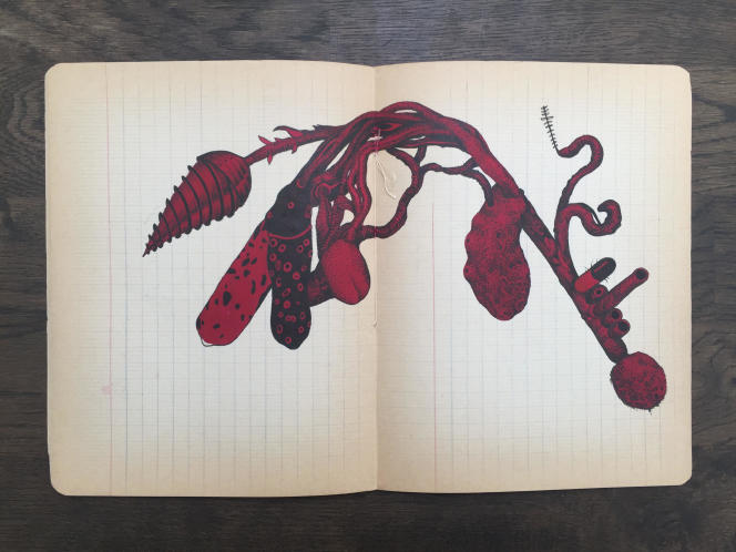 La Tunisienne Aïcha Snoussi dessine des formes troublantes dans de vieux cahiers d'écolier.