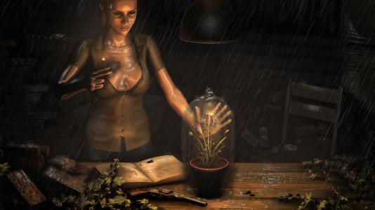 Silicon Echo Studios avait fait financer sur Kickstarter le jeu« The Herbologist», jeu dont on n'avait depuis quasi plus entendu parler. Le développeur ayant de toute façon déclaré que la décision de Steam le forçait à quitter l'industrie, il est peu probable qu'il sorte un jour.