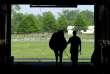 Une jument enceinte sort d'une grange à Paris, Kentucky, le 12 mai 2001 (photo d'illustration).