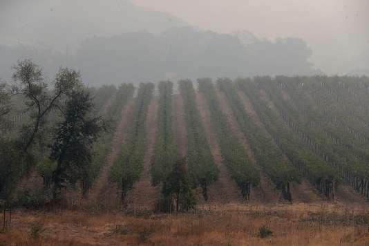 Les incendies font rage dans la vallée de Napa, dans le nord de la Californie, le 10 octobre.