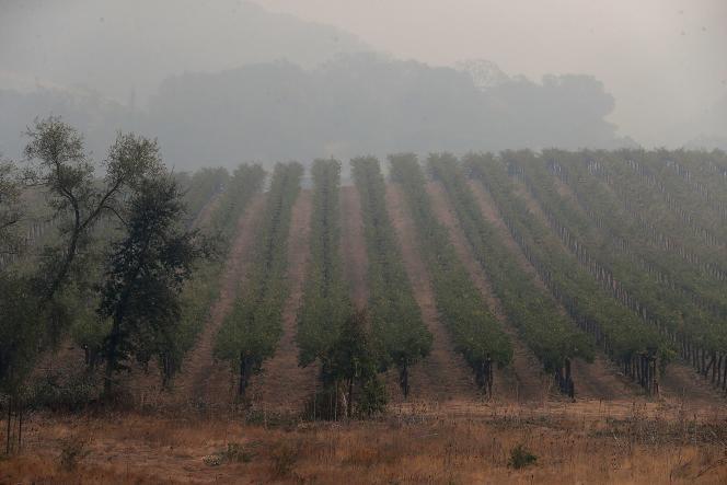 Les incendies font rage dans la vallée de Napa, dans le nord de la Californie, le10octobre.